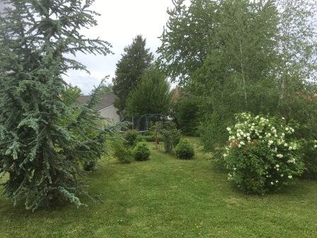 Gîte Allier - jardin arbres